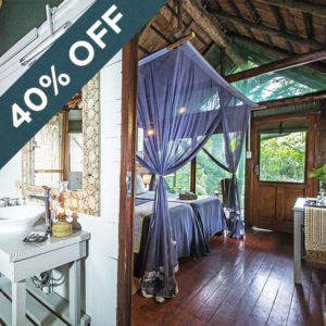 Save 40% at the stunning Kosi Forest Lodge!