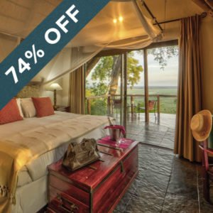 Save an incredible 74% when staying at the gorgeous Muchenje Safari Lodge